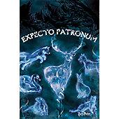 Harry Potter Patronus Poster 61x91.5cm