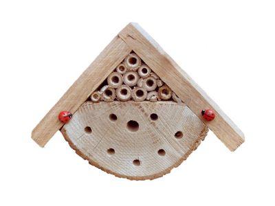 Wildlife World Bug Box