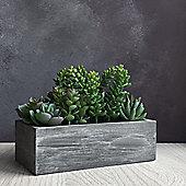 Artificial Mixed Succulent Trough