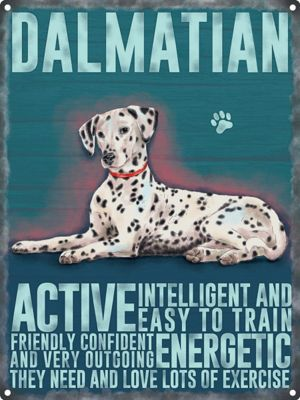 Dalmation Tin Sign 30x40cm,