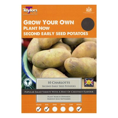 10x Second Early Seed Potato 'Charlotte' Grow Your Own Vegetables