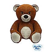 Cloud Pet Pals Bear Plush Toy