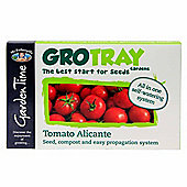 Mr Fothergill's GroTray - Alicante Tomato Seeds, Compost & Propagation Kit