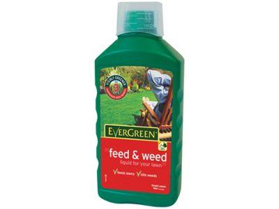 Levington Evergreen Feed&Weed Liq.1Ltr