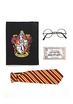Warner Bros. Harry Potter Fancy Dress Accessories Pack - Multi