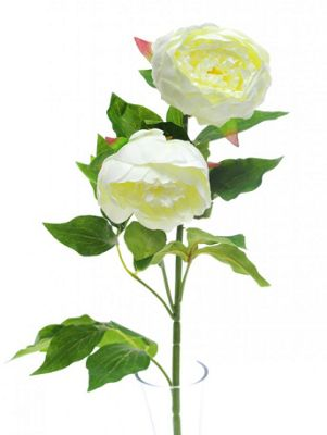 Artificial - Peony Double Spray - Cream