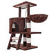 Confidence Pet Deluxe Cat Kitten Tree Scratch Post Activity Centre Brown