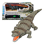 Innovation RC Crocodile Toy