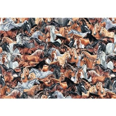 Impossible Puzzle - Horses - 500pc