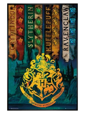 Harry Potter Gloss Black Framed House Flags Poster 61 x 91.5cm