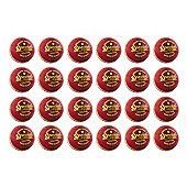 24 Pack Readers Special Schools Cricket Ball