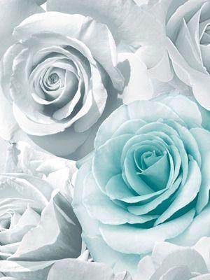 Madison Rose Glitter Floral Wallpaper Aqua and Grey Muriva 139523
