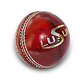 Lusum Munifex Youth cricket ball