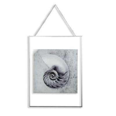 Mono Shell Glass Print 40cm x 30cm