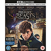 Fantastic Beasts And Where To Find Them 4K Ultra HD