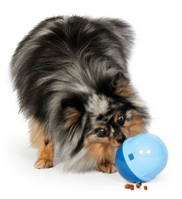 Aspen Pet Wobbling Treatball Dog Toy in Blue