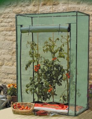 Tomato Growbag Growhouse with Reinforced Cover
