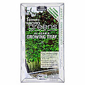 Microgreen Baby Leaf Salad Shoot Growing Tray