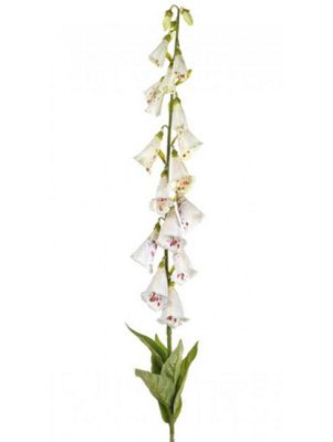 Artificial - Foxglove - Cream