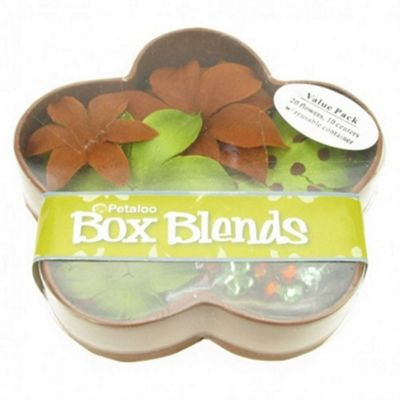 Dahlia Box Blend - Green/Brown
