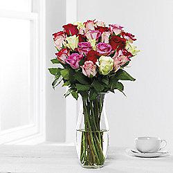 Mixed Rose Abundance