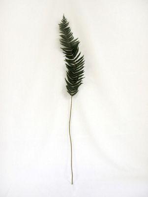 Artificial - Fern Leaf Large - Green