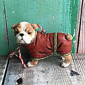 Bulldog in Coat Dog Decoration