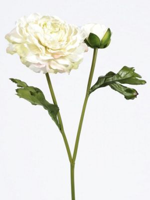 Artificial - Vintage Ranunculus - Cream