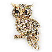 Clear Swarovski Crystal 'Owl' Brooch In Gold Plating - 60mm Length