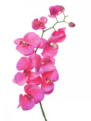 Artificial - Premier Orchid - Dark Pink