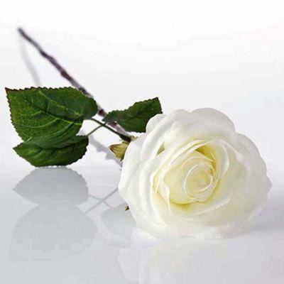 Bahne Faux Rose Single Stem in Cream 68cm Long Pack of 4