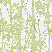Fresco Fabric Branches Green Wallpaper