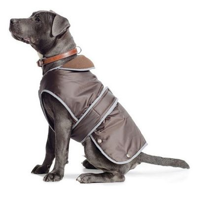 Ancol Chocolate Stormguard Dog Coat - Extra Small