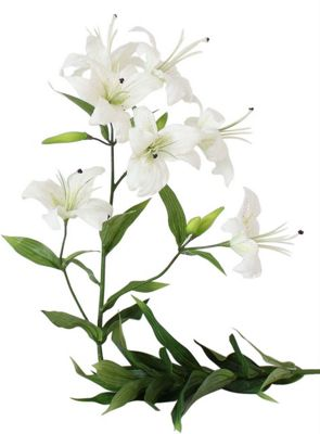 White Single Lilly Flower Floral Home Decoration