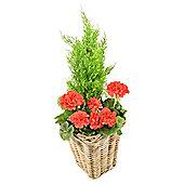 Artificial Red Geranium Planter