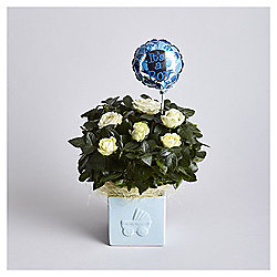 Baby Boy Rose Gift