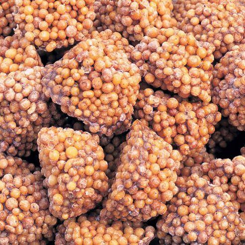 Push, Feed 'n' Forget™ Fertiliser Tablets - 50 tablets