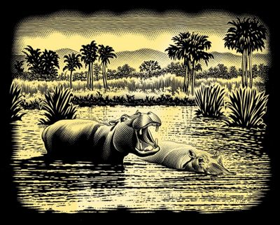 Reeves Copperfoil Gold - Hippos
