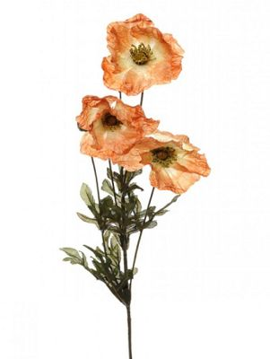 Artificial - Amber Poppy - Brown