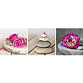 Spa Montage Set of 3 Printed Canvases 20cm x 20cm Each