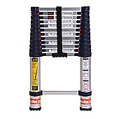 Xtend+Climb Plus Series Professional 3.8m Telescopic Ladder