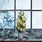Frosted Mini Christmas Tree 20 Warm White LED Fairy Lights