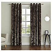 "Fox & Ivy  Lined Velvet Curtains -  - 66x54"" - Mink"