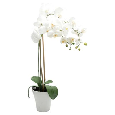 buy 65cm real touch phalaenopsis orchid in ceramic pot. Black Bedroom Furniture Sets. Home Design Ideas