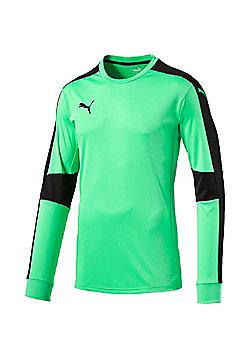 Puma Triumphant Goalkeeper Shirt - Green