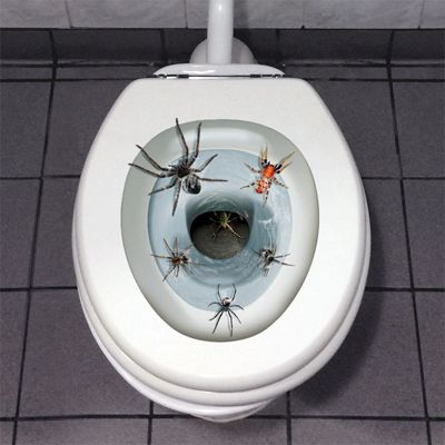 Spider Toilet Decoration - 43cm Halloween Decoration