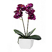 Artificial - Potted Orchid Mini - Fuchsia
