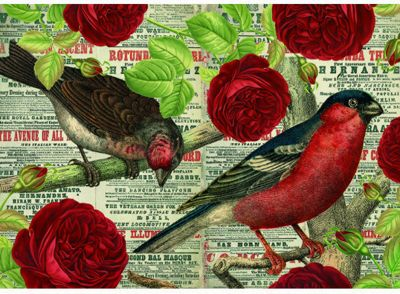 Birds Love Flowers - 500pc Puzzle