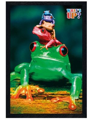 Five Frog Pyramid Black Wooden Framed What's Up? Poster