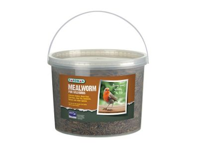 Gardman A04510 Mealworm Tub 100g